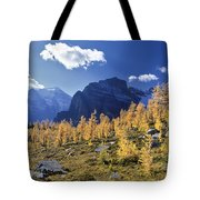 Larch Trees From The Saddleback Trail Tote Bag