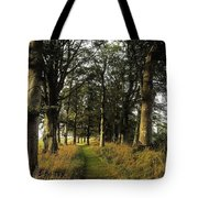 Larchill Arcadian Garden, County Tote Bag