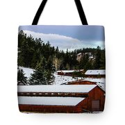 Large Barn Tote Bag