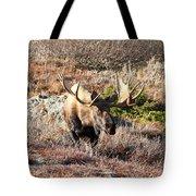 Large Bull Moose Tote Bag