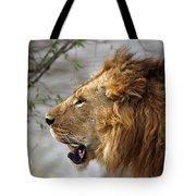 Large Male Lion Profile Portrait Tote Bag