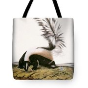 Large Tailed Skunk Tote Bag