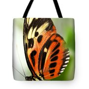 Large Tiger Butterfly Tote Bag