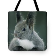 Large Tufted Ears Grace An Tote Bag