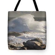 Large Waves Near Pemaquid Point On The Coast Of Maine Tote Bag