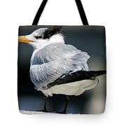 Larry Fine Reincarnated Tote Bag