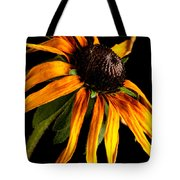 Last Day Of A Black-eyed Susan Tote Bag