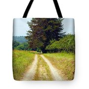 Last Of The Great Trees Tote Bag