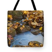 Last Signs Of Autumn 0438 Tote Bag