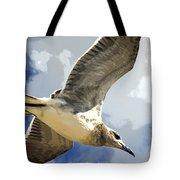 Last Winds Of Hurricane Issac  Tote Bag