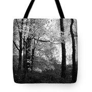 Lasting Leaves Tote Bag