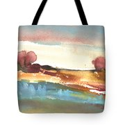 Late Afternoon 38 Tote Bag
