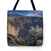 Late Afternoon At Black Canyon Of The Gunnison Tote Bag
