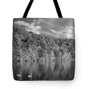 Late Afternoon At The Lake - Bw Tote Bag