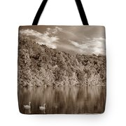 Late Afternoon At The Lake - S Tote Bag