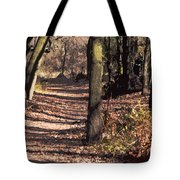 Late Afternoon Walk Tote Bag