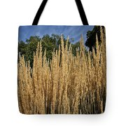 Late Summer Colors Tote Bag