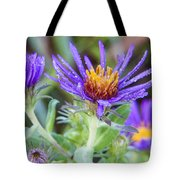 late Summer Fleabane Tote Bag