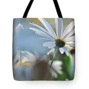 Late Sunshine On Daisies Tote Bag
