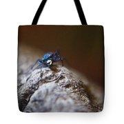 Laughing Cincindellidae Tote Bag
