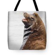 Laughing Sea Lion Tote Bag