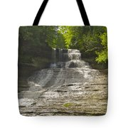 Laughing Whitefish 4608 Tote Bag