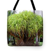 Lauhala Tree Tote Bag