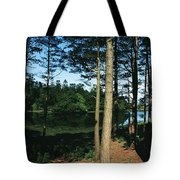 Lauragh, Co Kerry, Ireland Trees In A Tote Bag