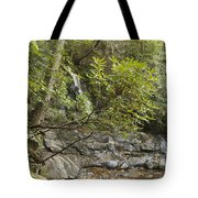 Laurel Falls 6226 Tote Bag by Michael Peychich
