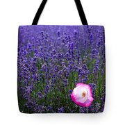 Lavender Field With Poppy Tote Bag