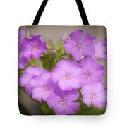 Lavender Phlox Tote Bag