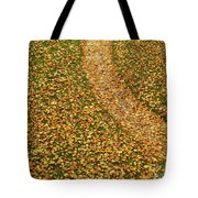 Lawn Covered With Fallen Leaves Tote Bag
