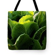 Layers Of Romaine Tote Bag
