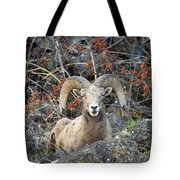 Laying In The Brush Tote Bag