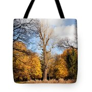 Lazienki Park Autumn Scenery Tote Bag