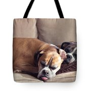 Lazy Boxers Tote Bag