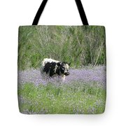 Lazy Stroll Tote Bag