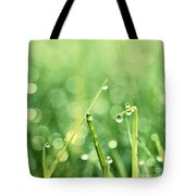 Le Reveil - S02b3 Tote Bag by Variance Collections
