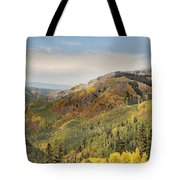 Lead King Basin Road 2 Tote Bag