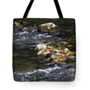 Leaf Collection Tote Bag