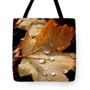 Leaf Doplets Tote Bag by LeeAnn McLaneGoetz McLaneGoetzStudioLLCcom