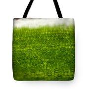 Leaf Stomata, Lm Tote Bag