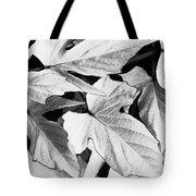 Leaf Study In Black And White Tote Bag