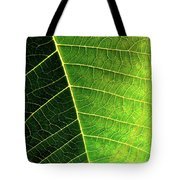 Leaf Texture Tote Bag by Carlos Caetano