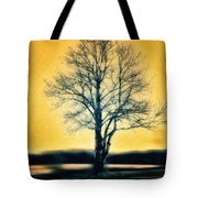 Leafless Tree Tote Bag