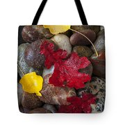 Leafs And Stones Tote Bag