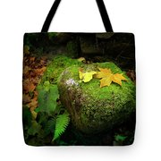Leafs On Rock Tote Bag
