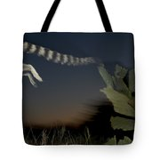 Leaping Ring-tailed Lemur  Tote Bag