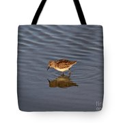 Least Sandpiper Tote Bag