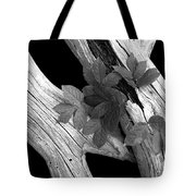 Leaves And Driftwood Bw Tote Bag